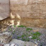 Curso de especialización – LA CAL Y LA TIERRA EN EL PATRIMONIO HISTÓRICO: Protección y conservación de los edificios de tierra
